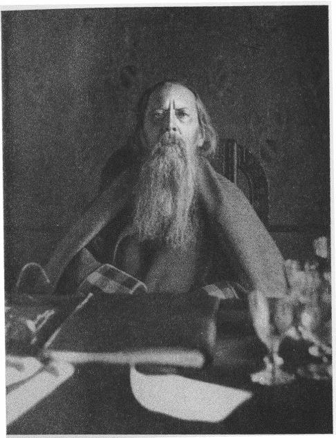 М.Е. Салтыков-Щедрин (фотография Л. Ф. Пантелеева (фрагмент), 1888 г.)